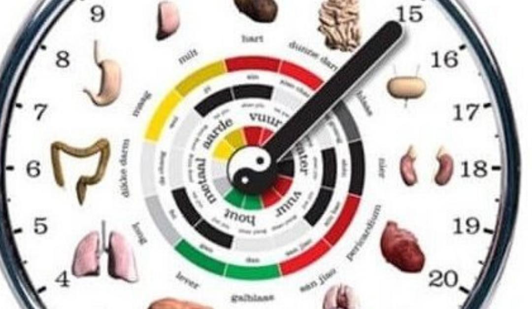 L'orologio energetico dei tuoi Meridiani esiste!